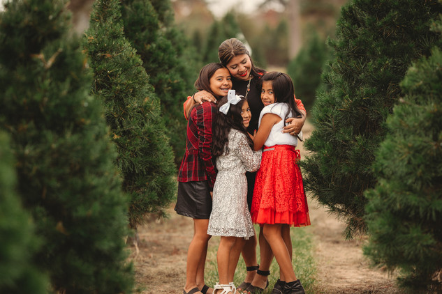 Christmas tree farm pictures in Magnolia tx