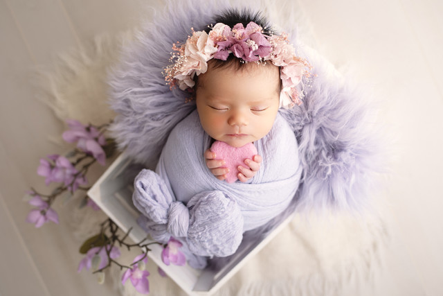 newborn photography in the woodlands tx