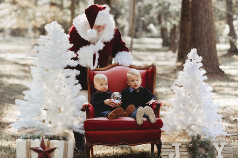 santa pictures the woodlands tx