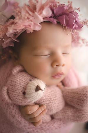 Riley5504.pinkbearpsd.jpg