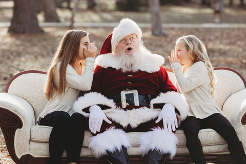 santa pictures in the woodlands tx