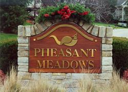 photo pheasant meadow