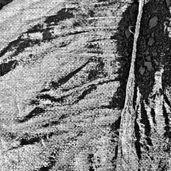 traces (19)