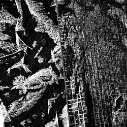 traces (11)