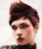 Finesse Hair Salon 38 Petaluma,  CA 94952