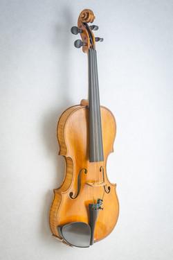 Violin016