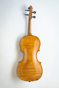 Violin008