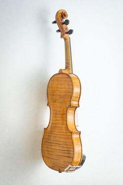 Violin007