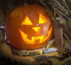 KnifePumpkin-32