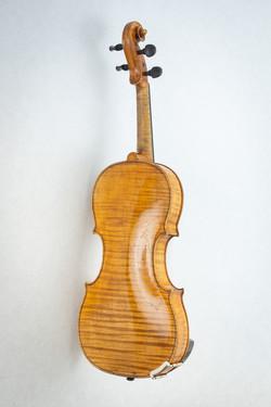 Violin005