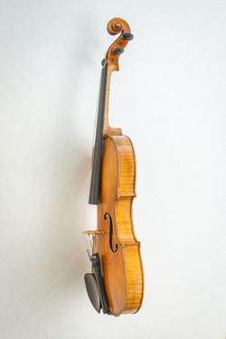 Violin009