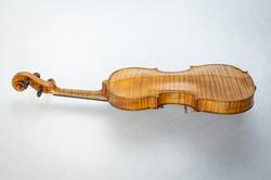 Violin002