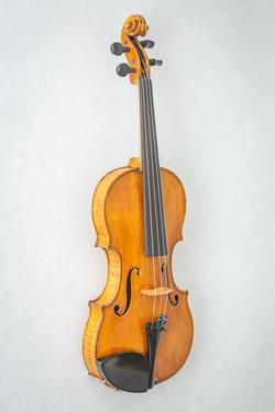 Violin015