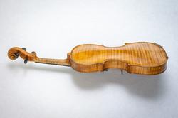 Violin001