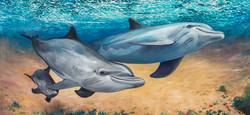 Dolphin Mural, Monterey, CA