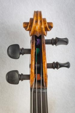 Violin021
