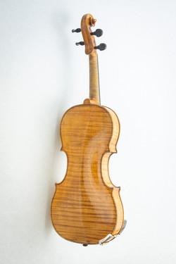 Violin006