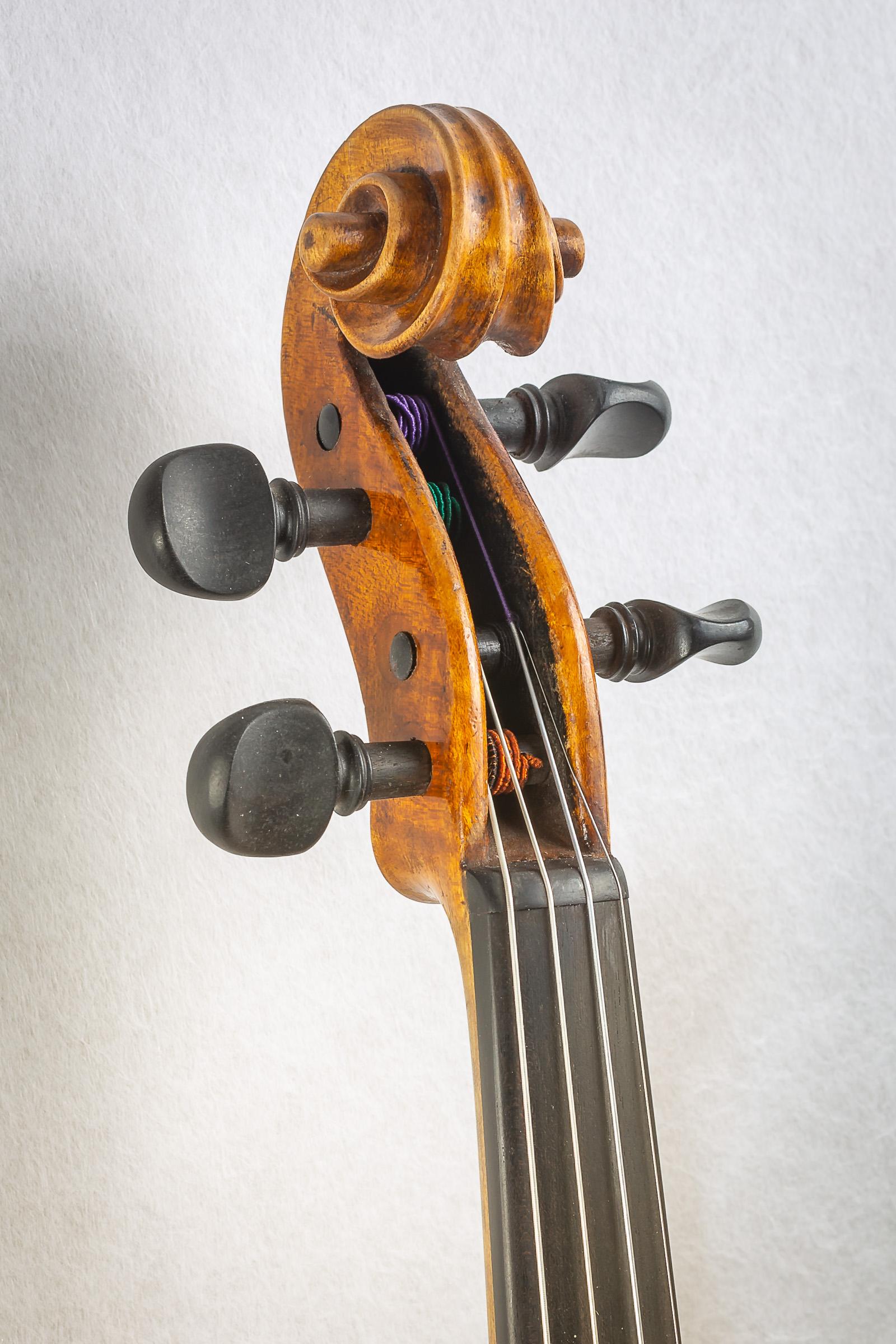 Violin019