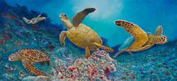 Turtle Mural, Monterey, CA
