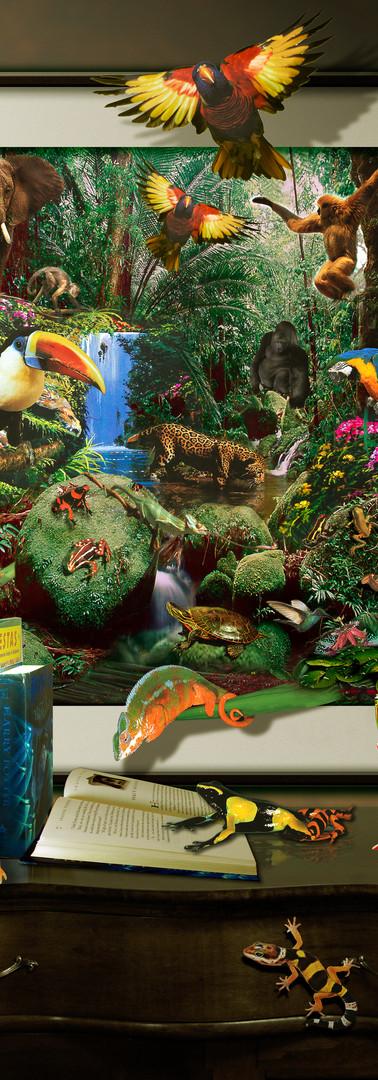 Jungle Literacy