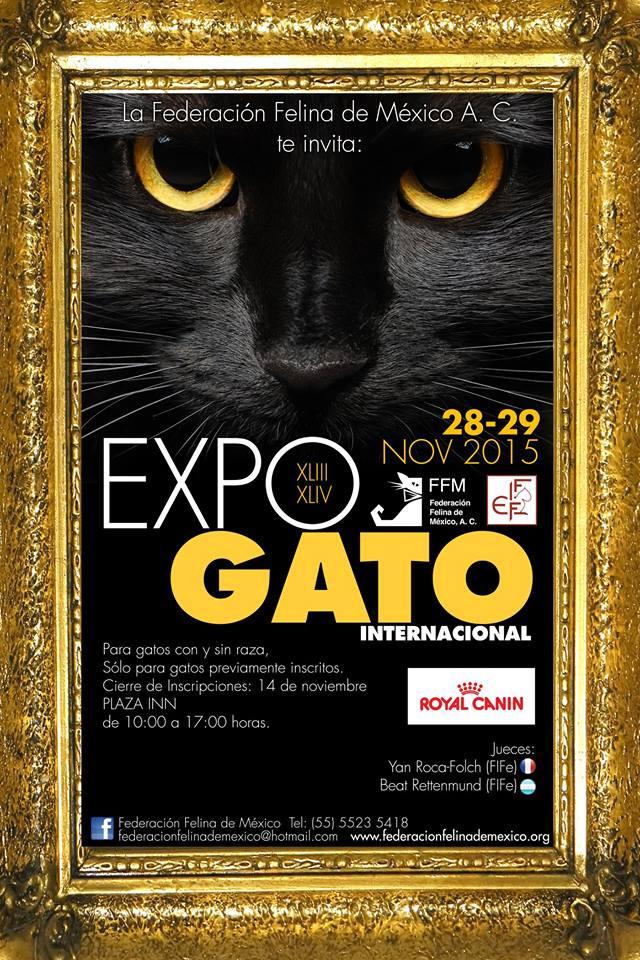 XLIII & XLIV EXPO GATO 2015