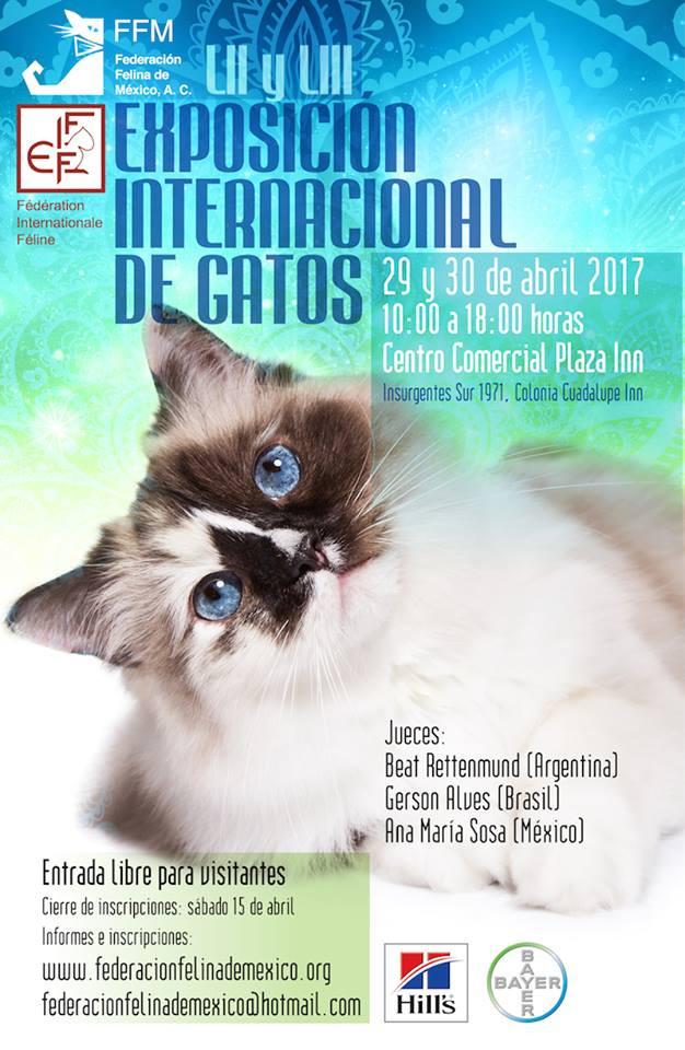 LII & LIII EXPO GATO 2017
