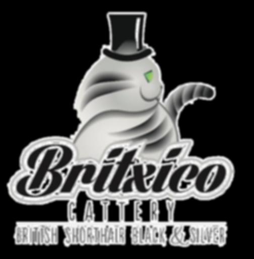 britixco_edited_edited.png