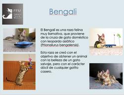 Captura de Pantalla 2020-08-01 a la(s) 1