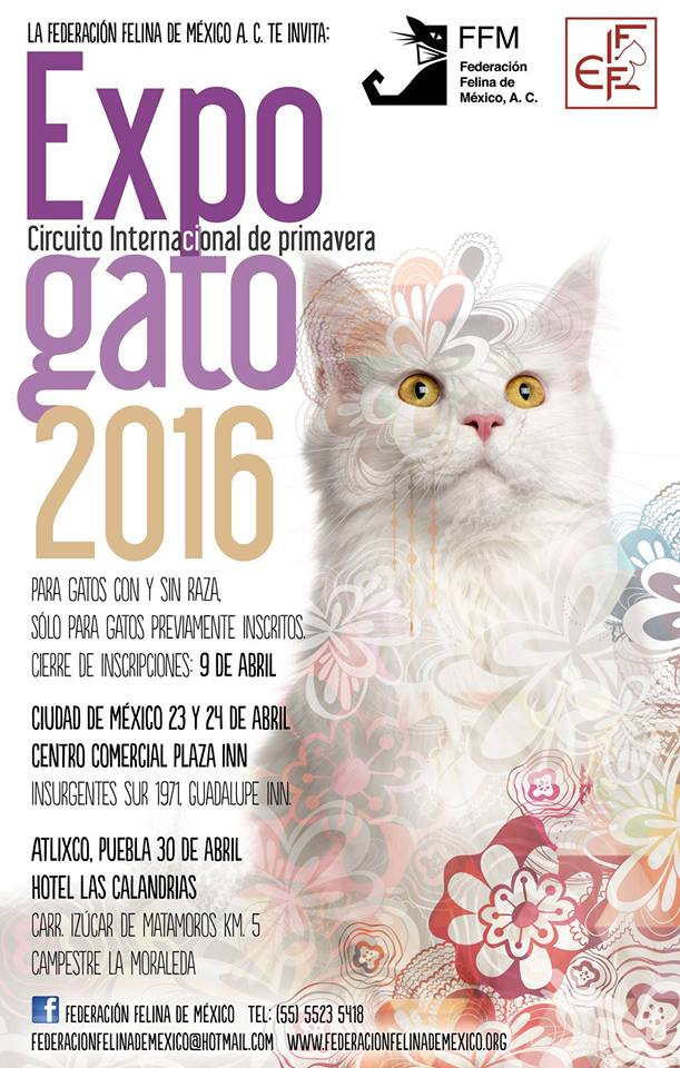 XLV, XLVI & XLVII EXPO GATO 2016
