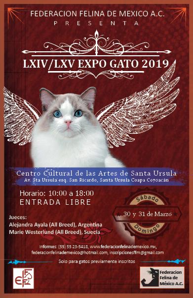 LXIV & LXV EXPO GATO 2019