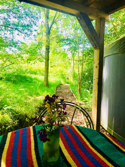 View from seating outside Yurt