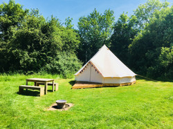Blackcurrant - Bell Tent