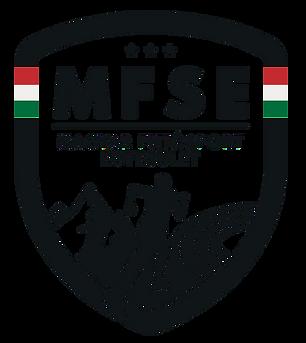 MFSE_png.png