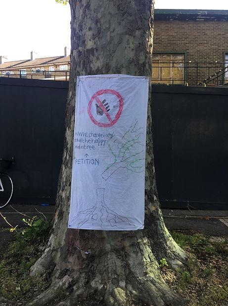 tree sign .jpg