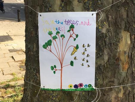 Tree Visit 16th May 2020