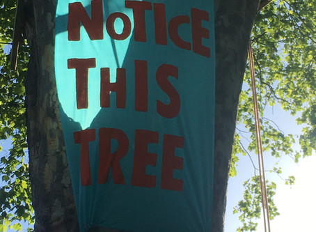 #noticethistree banner goes up in the tree