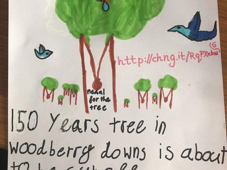 Tree Visit 17th May 2020