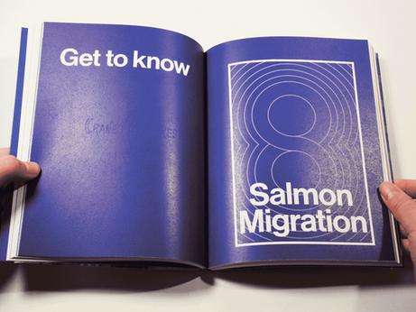 Salmon_final-flipbook_edited4.png