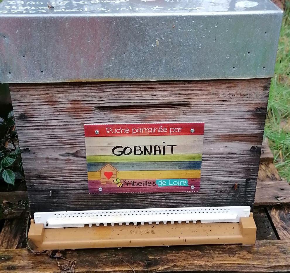 AMBROISE - BRIGID - GOBNAIT