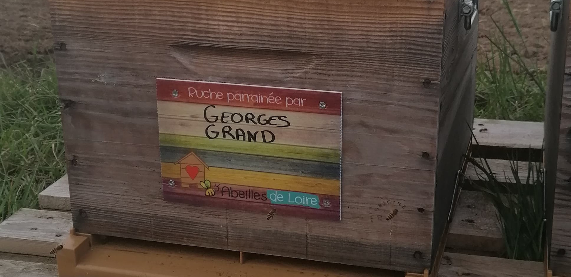 GRAND Georges