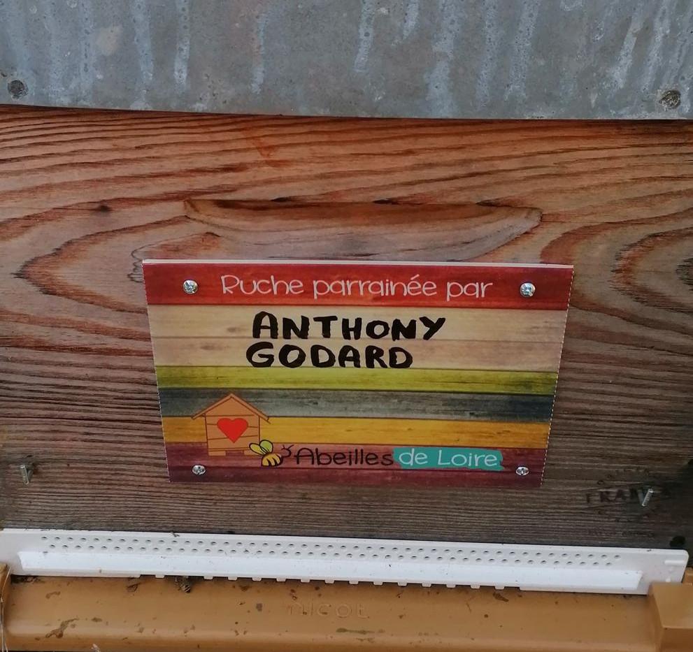 GODARD Anthony