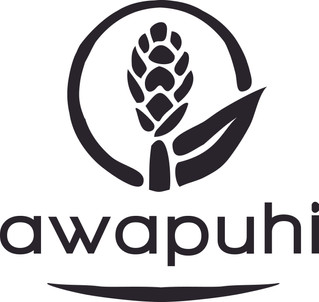 Awapuhi Wild Ginger - Le Traitement