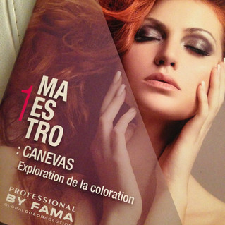 Formation Maestro 1: CANEVAS Exploration de la coloration