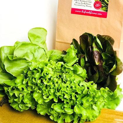 Small Bag of Salad Greens