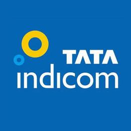 Tata Indicom, Identity for India's Largest Telecom Company