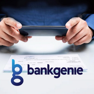 bank-genie%20identity%20counsel%20brand%