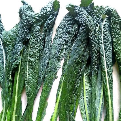 Kale, Cavolo Nero