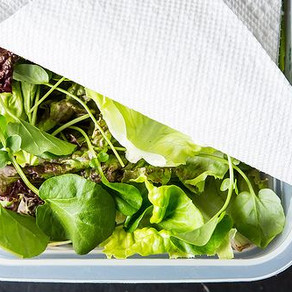How to store Livfresh farms Greens.