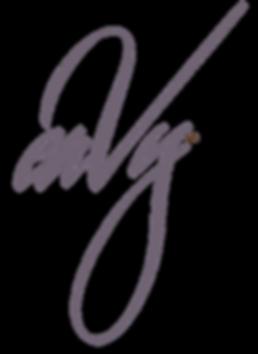 enVy Pillow Logo