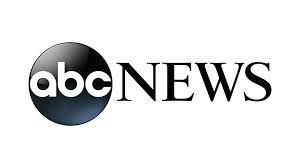 abc news enVy pillow